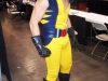 Wolverine (Arizona Avengers)